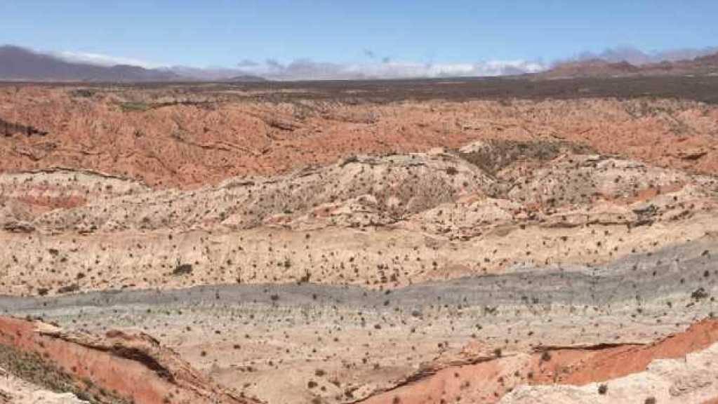 Einst Sumpfboden, heute Halbwüste: Siderite aus dieser Fundstelle in Argentinien gewähren einen Blick ins Klima der Vergangenheit.