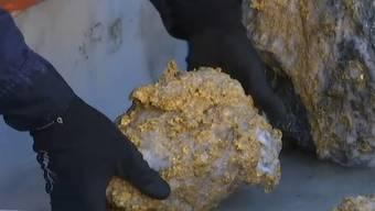 Sensation: In einer Mine in West-Australien sind Steine mit Goldkrusten im Wert von über elf Millionen Franken gefunden worden.