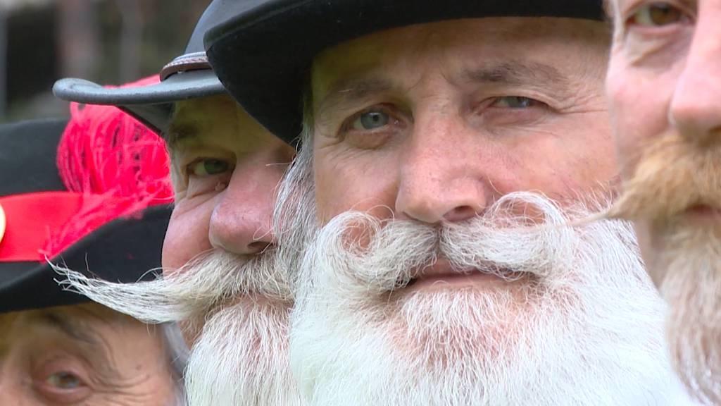 Wer hat den schönsten Bart?