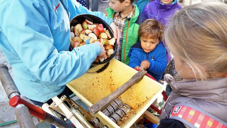 Unermüdlich drehen die Kinder das Rad der Häckselmaschine, in welcher die Äpfel zerkleinert werden