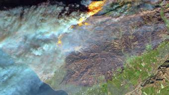 """Ein Satellitenfoto des """"Thomas""""-Feuers, das als schlimmster Brand in der jüngeren Geschichte Kaliforniens eingestuft wird. (Archiv)"""