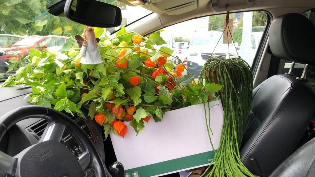 Blumen auf dem Beifahrersitz können gefährlich werden.