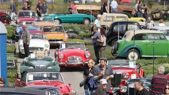 2013 waren am 4. Oldtimer-Treffen rund 700 nostalgische Fahrzeuge zu sehen.Archiv/zvg