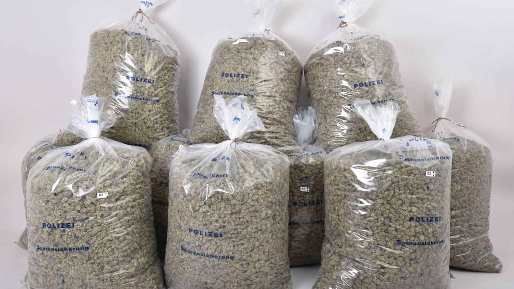 90 Kilogramm Marihuana in Möbeln versteckt