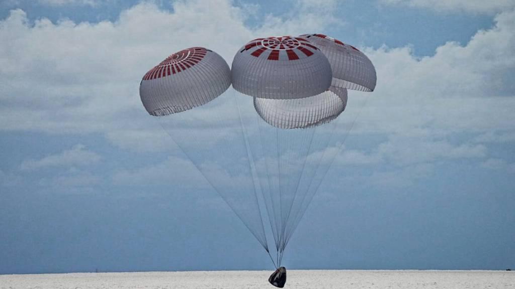 Laien-Astronauten nach Reise ins Weltall zurück auf der Erde