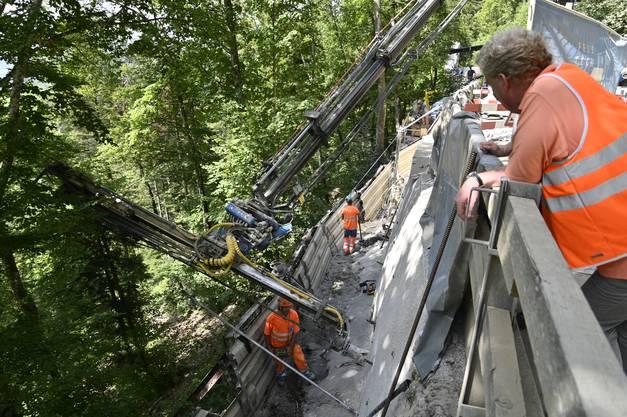Etliche Felsanker wurden schon angebracht, um die gespritzte Betonwand zu stabilisieren.