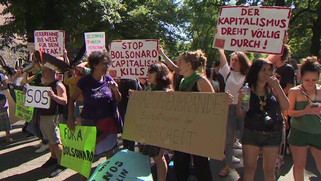 Rettet den Amazonas: Weltweite Demonstrationen
