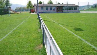 Grössere Spielfelder und ein erweitertes Garderobengebäude sollen den FC Dietwil in die Zukunft begleiten. (es)