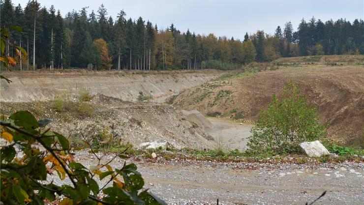 Die ausgeschöpfte Kiesgrube Aegerten im Neuendörfer Wald.