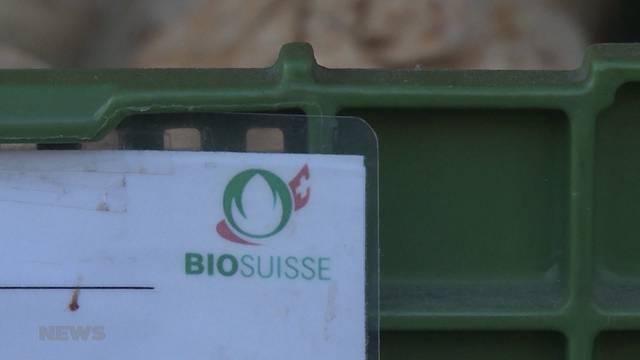 Grosser Aufstieg für Bio-Produkte