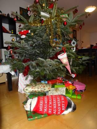 Weihnachtsbaum 2013 mit Special Prsent