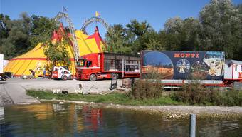 Der Circus Monti hat seine Zelte zwischen dem Campingplatz und der Badi am Aareufer aufgeschlagen. Bild: Wolfgang Wagmann