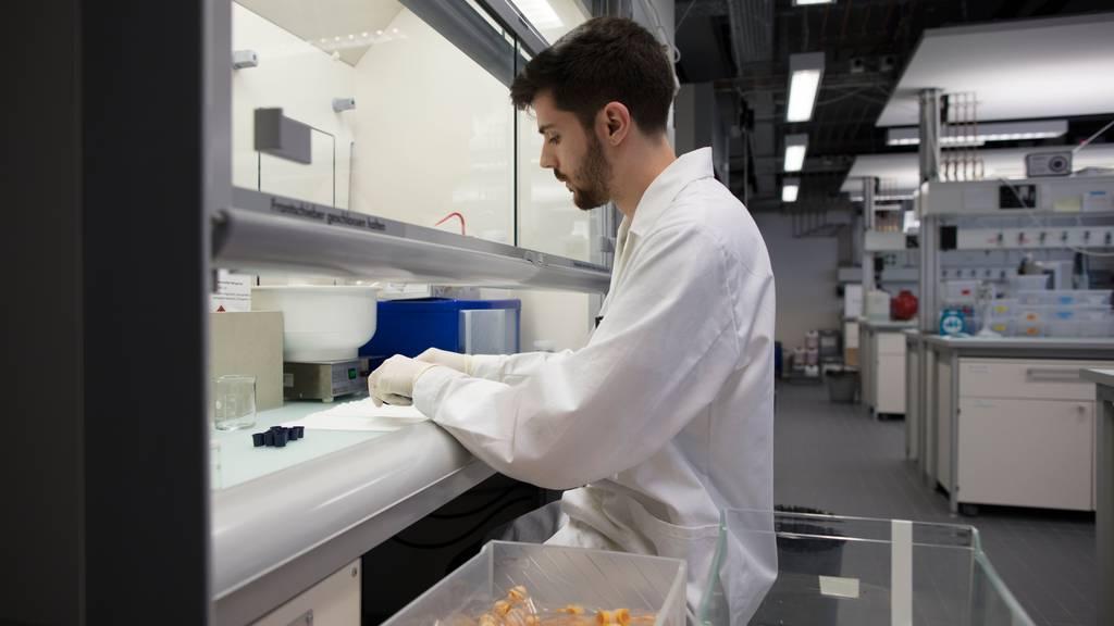 Viele kleinere Berufe wie Laborant verzeichnen eine hohe Quote an Berufsmaturitäts-Absolventen. (Symbolbild)