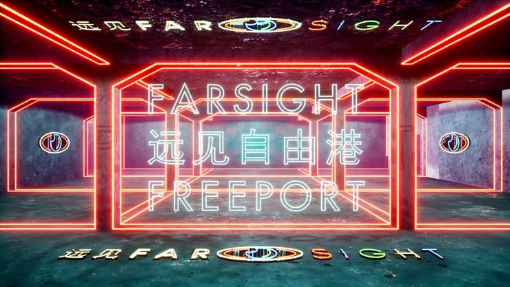 Das virtuelle Haus der elektronischen Künste in «Farsight Freeport».