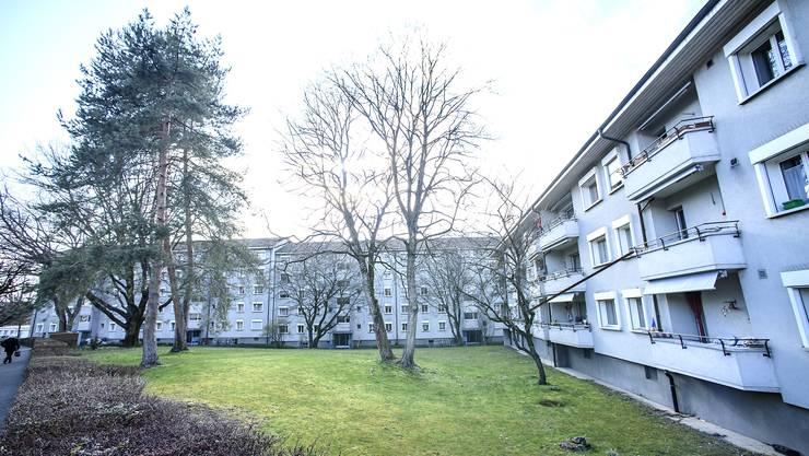 Die Blöcke an der Birseckstrasse in Birsfelden sollen der Abrissbirne zum Opfer fallen.
