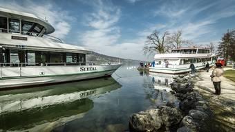 Hallwilersee: Totalsanierte «MS Brestenberg» im Schlepp auf eingewassert