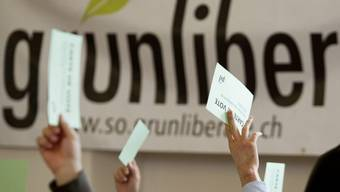 Die Zürcher Grünliberalen unterstützen die Gesetzesrevision. (Symbolbild).JPG