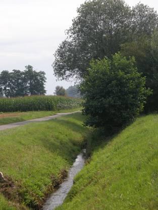 Ein kanalisiertes, ökologisch wenig wertvolles Gewässer.