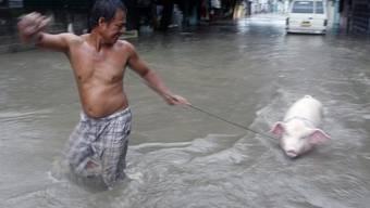 Taifun Usagi hinterlässt in Sudostasien eine Spur der Zerstörung