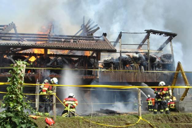 Die Feuerwehr konnte ein Übergreifen auf Wohnhaus und Stallanbau verhindern.