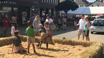 Am Dorffest konnten die Jüngsten unter anderem am Schnupperschwingen teilnehmen.