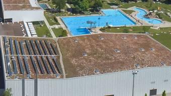 Auf dem Dach der Eissporthalle Bergholz in Wil entsteht eine 2500 Quadratmeter grosse Bürger-Solaranlage, an der sich alle beteiligen können. Vier Fünftel der Fläche ist bereits verkauft.