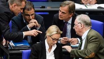 Hat nicht immer ein glückliches Händchen: Die AfD-Fraktion im deutschen Bundestag.