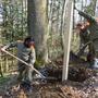 Zivilschützer werten Waldwanderweg am Born mit Informationstafeln auf