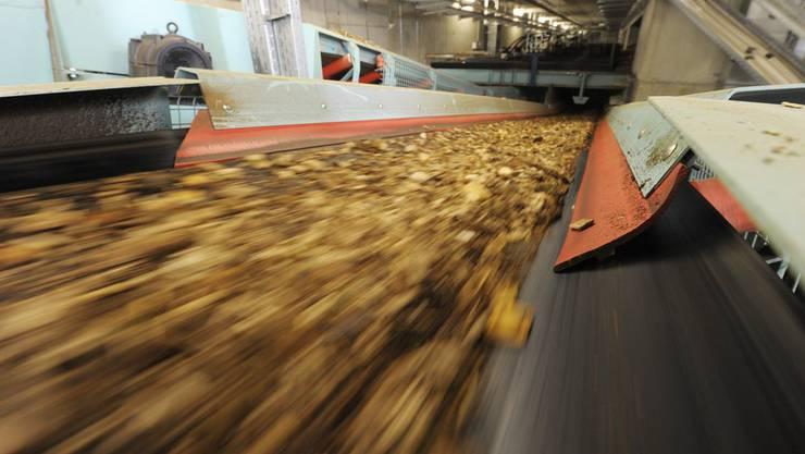 Rund 15 Millionen Franken soll das neue Holzheizkraftwerk kosten. (Archiv)