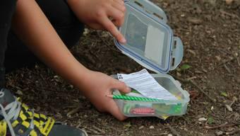 Aufgespürt! Geocacher Robert hat den gesuchten Cache, eine Tupperware-Box mit verschiedenen kleineren Gegenständen, gefunden.  cnd