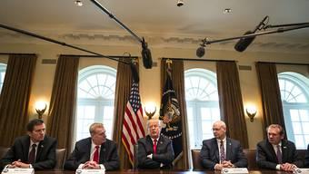 US-Präsident Donald Trump (M) kündigt die Strafzölle vor den Medien an, flankiert von führenden Vertretern der US-Stahl- und Aluminiumindustrie.