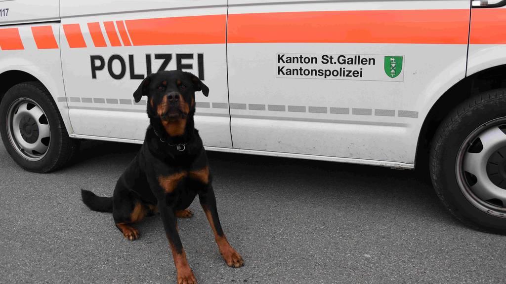 Polizeihund Yodi vom Amtsbach konnte den Mann stellen.