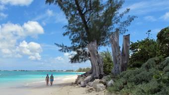 Seven Mile Beach auf den Cayman Island: 30 Prozent aller globalen Investitionen werden laut UNCTAD über Steuerparadiese abgewickelt.