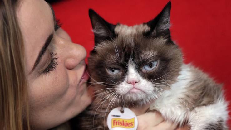 Grumpy Cat posiert mit Besitzerin Tabatha Bundesen.