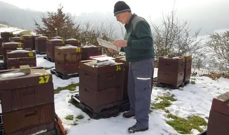 Auch Im Winter Summen Die Bienen Nur Leiser Fricktal Aargau