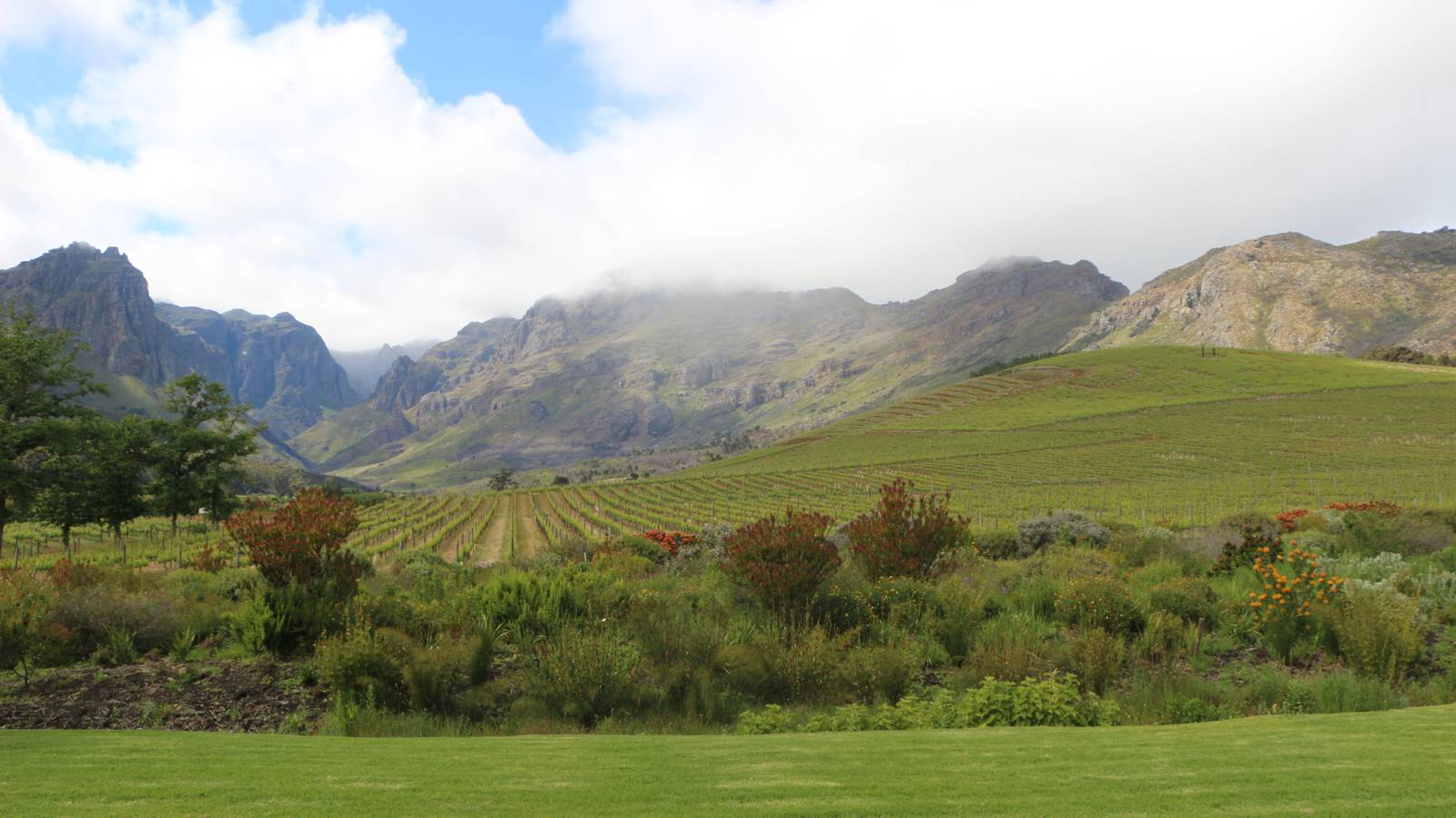 Südafrika - das Weinland (© Radio Argovia)