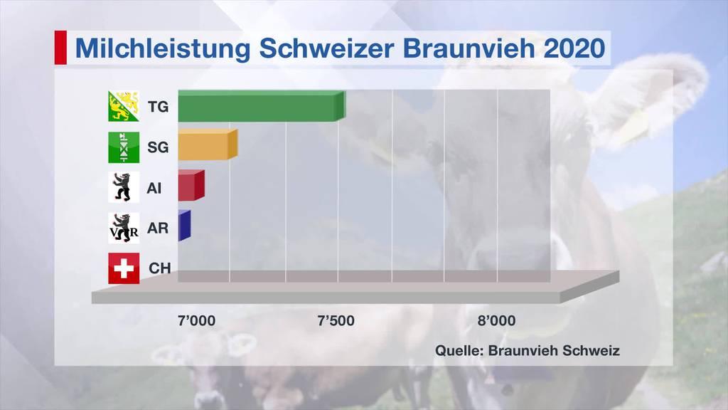 Spitzenreiter: Thurgauer Kühe geben am meisten Milch