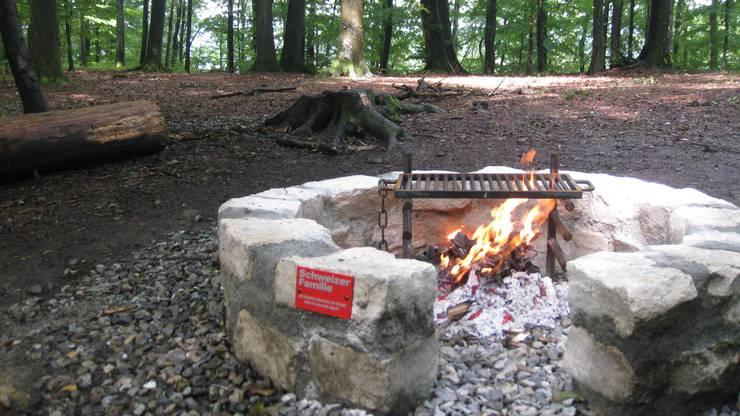 Beim Martingsberg Chänzeli in Baden: Diese Feuerstelle in einem schönen alten Buchenwald wurde nach dem Standard der Schweizer Familie ausgebaut.