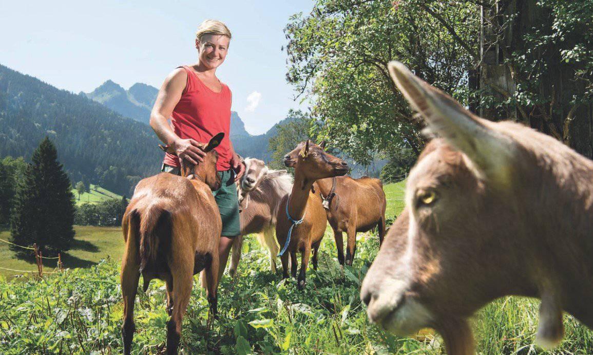 Miriam Stauffacher bittet um Hilfe bei der Suche nach ihren Geisslein. (Bild: zVG)