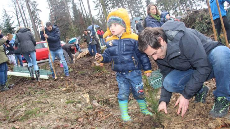 Weitere Impressionen der Baumpflanzaktion in Schöftland.