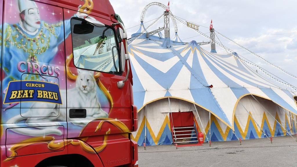 Razzia bei Beat Breus Zirkus
