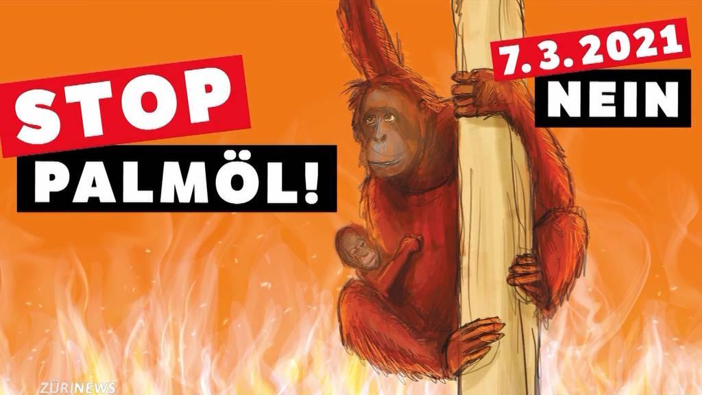 Komitee kämpft wegen Palmöl gegen Freihandelsabkommen mit Indonesien