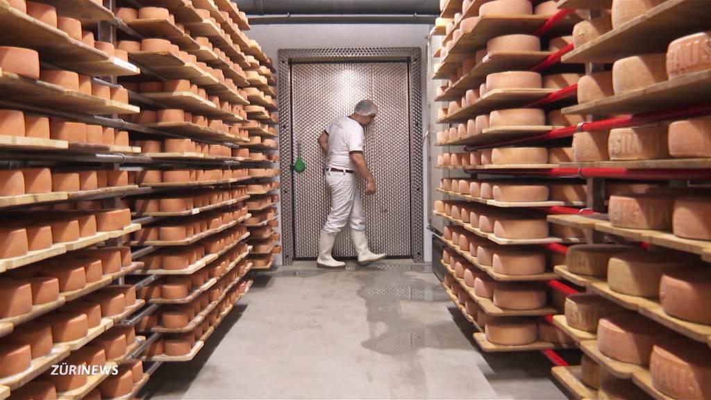 Wie Käser gefährlichen Listerien vorbeugen