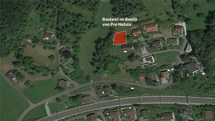 Pro Natura will möglichst viele Schutzgebiete in der Schweiz schaffen. Dafür kauft sie regelmässig Land.