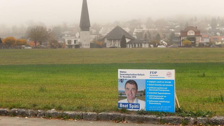 Ein einsames Wahlplakat steht auf der Dorfwiese.