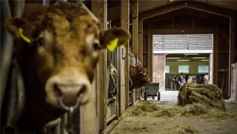 Der Nationalrat hat das Gesetz für Hobby-Tierhaltung auf Bauernhöfen entschärft.