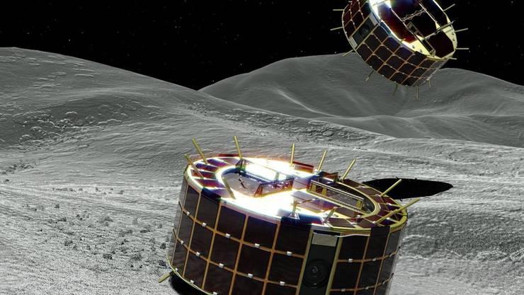 """Animationsbild der beiden zylinderförmigen """"Rover-1A"""" und """"Rover-1B""""."""