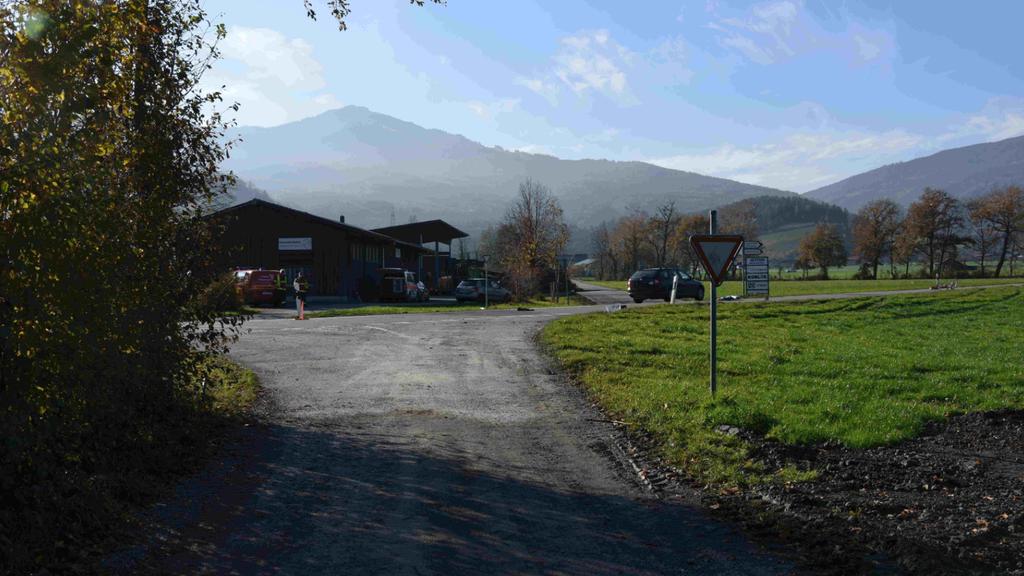 92-Jährige stirbt nach E-Bike-Unfall in Oberriet