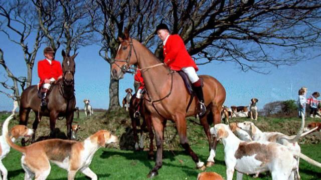 Britische Jäger machen sich bereit (Symbolbild)