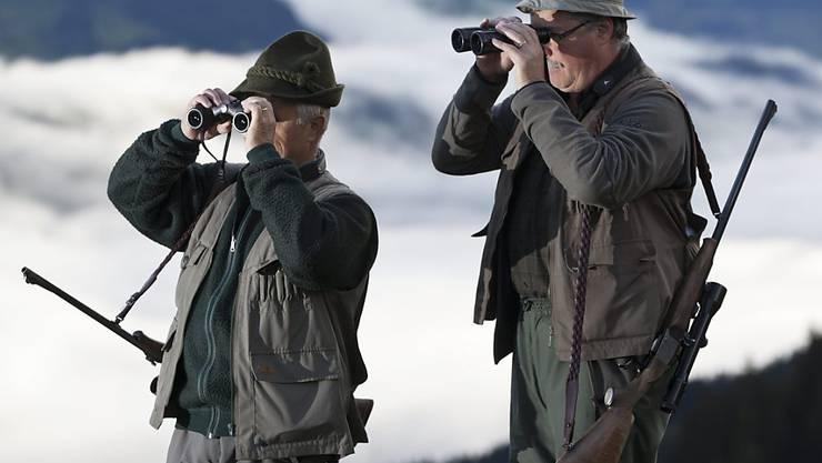 Die Bündner Jäger haben im September einiges zu tun - 5000 Hirsche müssen erlegt werden (Archiv).